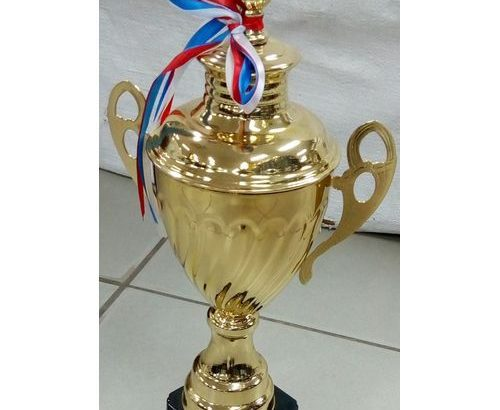 Trophy Big Golden Trophy With Black Plate Holder