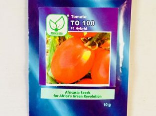 Africasia Tomato – TO 100 F1 Hybrid Seeds 10g