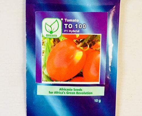 Africasia Tomato – TO 100 F1 Hybrid Seeds 10g