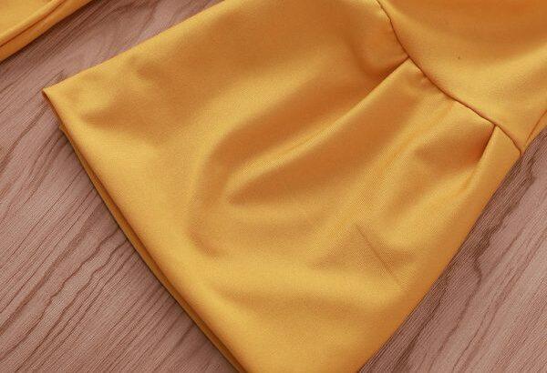 Women Deep V Neck Long Sleeves Bandage Mini Dress- Office wear