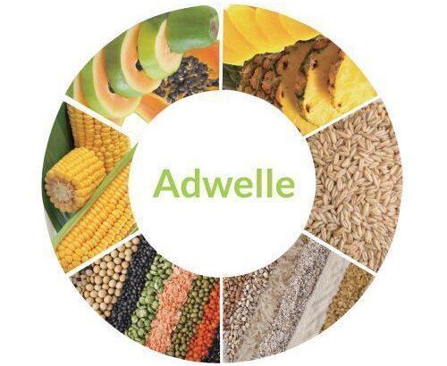Immeri Adwelle Powder Drink, Plant Based Enzyme 4g X 50