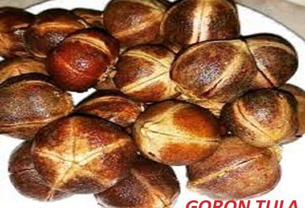 Azanza Garckeana Goron Tula Immune Booster 100% Natural Herb