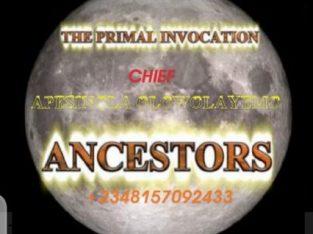 The best powerful spiritual herbalist in nigeria