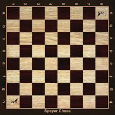 Brains Chess Game