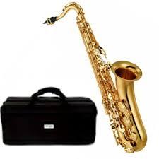 Yamaha Professional Alto Gold Saxophone