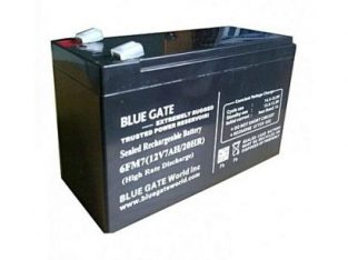 Blue Gate Blue Gate Ups Replacement Batteries