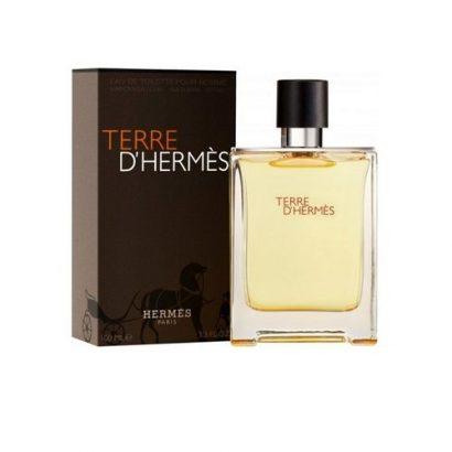 Hermes Terre D'hermès Hermès EDT 100ml Perfume For Men