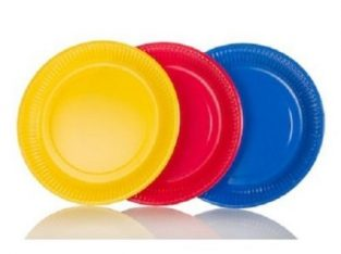 25 Pieces Disposable Plates