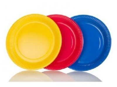 25Pcs Disposable Plates
