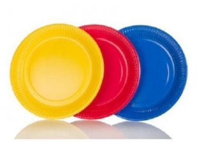25Pcs Disposable Plates