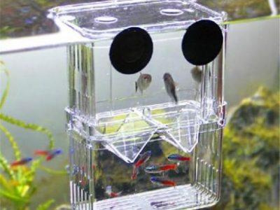 4 In1 Aquarium Fish Fry Breeding Hatchery Incubator Isolation Box Tank Shrimp Large