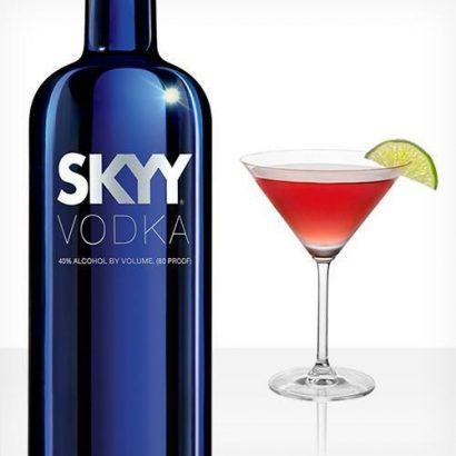 SKYY Skyy Vodka – 12 Bottles (1 Carton)