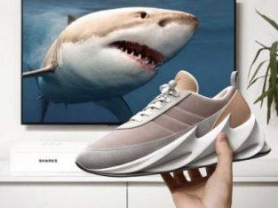 Adidas Shark Sneakers