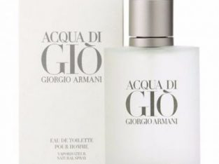 Giorgio Armani Acqua Di Gio For Men 100ml EDT