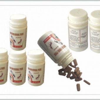 Libracin Mascum Herbal Pride – Premature Ejaculation And Weak Erection Cure (New Pack)