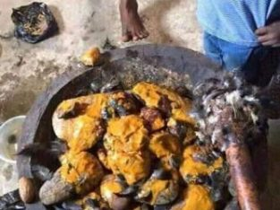 Spiritual herbalist powerful and native doctor in Nigeria..+2349051820913