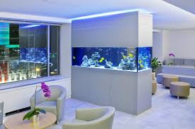 Large Aquariums Fish tank for living rooms and outdoor