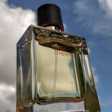 Hermes Terre D'hermès Hermès EDT 100ml Perfume For Men