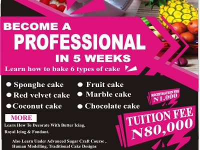 Learn How to Make 6 Types of Cake and Many More