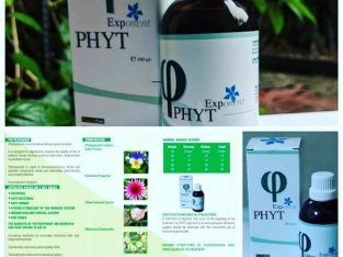 Boost your immunity today with PHYTEXPONENT