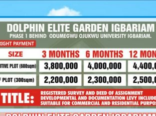 Buy Your Plot of Land at Dolphin Elite Garden, Igbariam, Anambra (Call or Whatsapp – 09067566