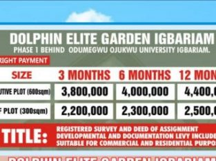Buy Your Plot of Land at Dolphin Elite Garden, Igbariam, Anambra