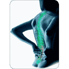 AROGYAM PURE HERBS KIT FOR JOINT PAINS