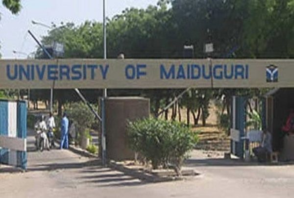 university  of maiduguri predegree remedial admission form for 2020 2021 academic session  is