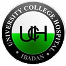 University College Hospital, Ibadan 2020/2021 Nursing Form