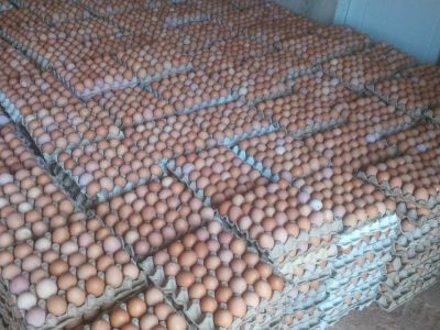 PRICE & LIST FOR FRESH EGGS WE DELIVER0 CRATES ABOVE PAY ON DELIVERY FOR THOS